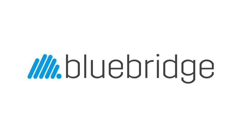 Bluebringe logo | Swan Software Solutions