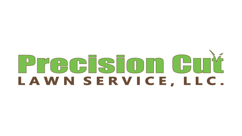 Precision Cut logo | Swan Software Solutions