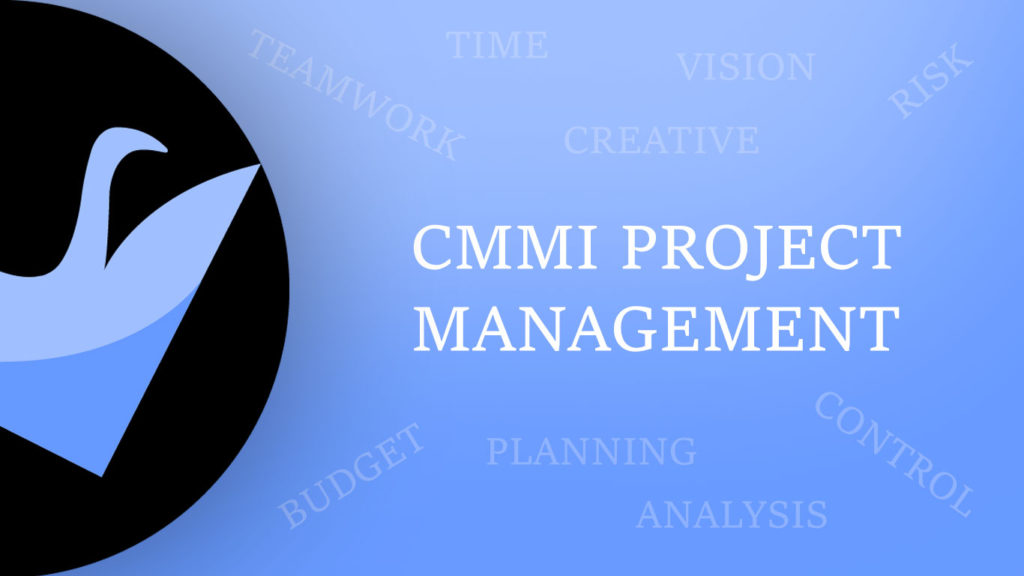 CMMI-Project-Management-Swan's-Progress-and-Development-of-Levels